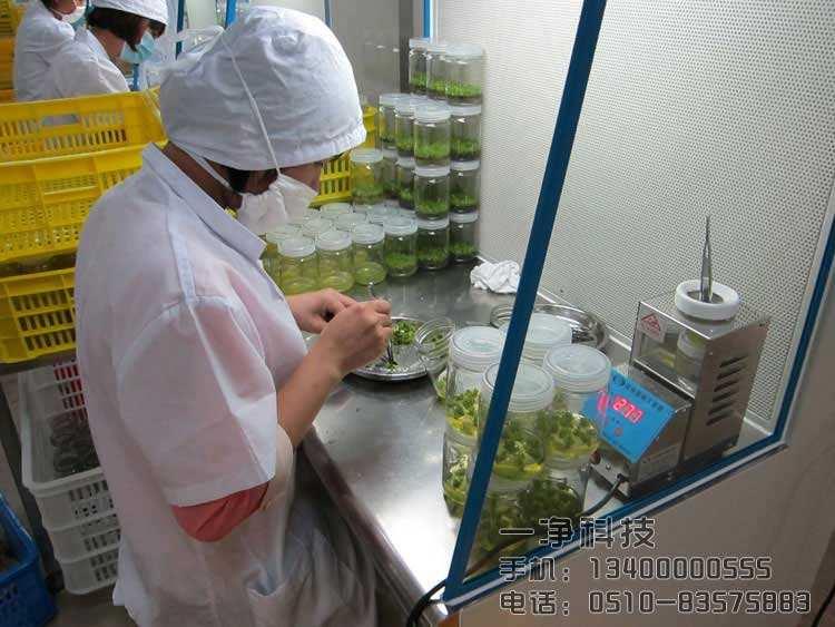 食用菌工厂无菌洁净室净化装修设计注意事项